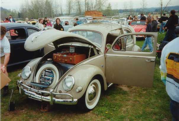 Nice Oval Window Bug